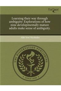 Learning Their Way Through Ambiguity: Explorations of How Nine Developmentally Mature Adults Make Sense of Ambiguity.