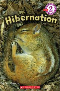 Hibernation