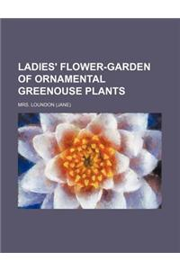 Ladies' Flower-Garden of Ornamental Greenouse Plants