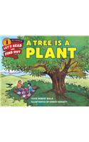 A Tree Is a Plant : Let's Read and Find out Science 1