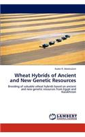 Wheat Hybrids of Ancient and New Genetic Resources
