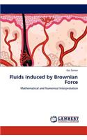Fluids Induced by Brownian Force