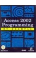 Access 2002 Programmimg By Example