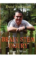Brain Stem Injury