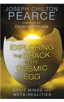 Exploring the Crack in the Cosmic Egg: Split Minds and Meta-Realities