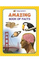 Amazing Book Of Facts