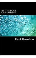 By the Pool of Bethesda: Biblical Meditations on Long-Term Illness and Terminal Diagnoses