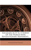 Socialism as It Is: A Survey of the World-Wide Revolutionary Movement...