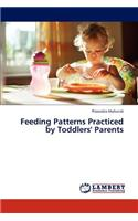 Feeding Patterns Practiced by Toddlers' Parents