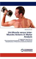Uni-Muscle Versus Inter-Muscles Actions in Motor Analysis