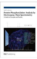 Protein Phosphorylation Analysis by Electrospray Mass Spectrometry: A Guide to Concepts and Practice