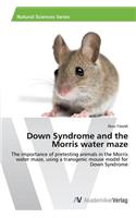 Down Syndrome and the Morris Water Maze