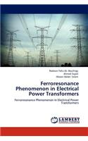 Ferroresonance Phenomenon in Electrical Power Transformers